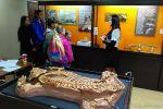 Открылся палеонтологический музей
