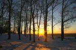 Скажите зиме до свидания