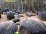 Жуковлянский карьер стал особо охраняемой природной территорией