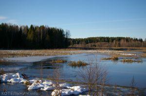 Зимы ждала, ждала природа…