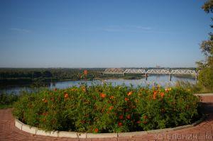 Школьники и безработные посадили 8000 цветов