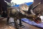 В Котельниче готовятся к прибытию динозавров