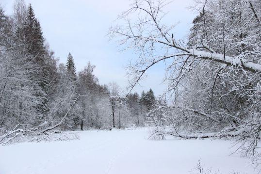 «Нургуш» приглашает на лыжные и нордик-прогулки