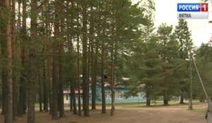 В Вишкиле начала работу летняя многопредметная школа