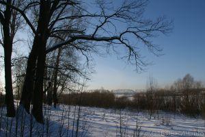 Зима смягчает нрав