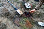 Прокуратура закрывает сайты браконьеров
